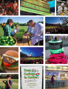 Food Report Photo Collage