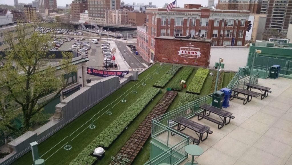 2015.07.17-NewsFeed-urban_farms_MLB-IMAGE
