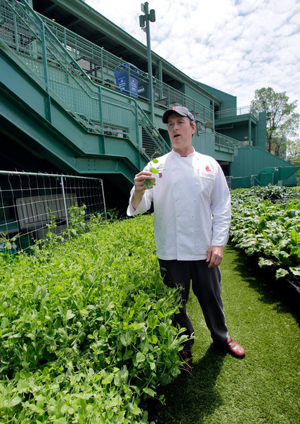 Ron Abell, Fenway's senior executive chef, took advantage of the garden's fresh produce at the ballpark's flagship restaurant. Credit Elise Amendola/Associated Press