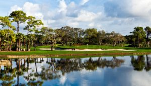 Photo_1_The_Champion_Course_No._1_PGA_National__the_waterways_at_PGA_National_are_important_habitat_links_to_the_Everglades_